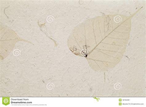 Handmade Leaf Paper - handmade leaf paper stock image image 18745481