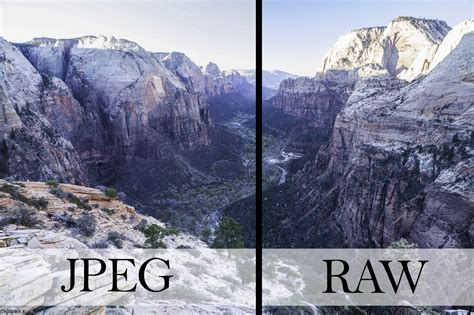 format file raw difference between jpeg and png do you know it