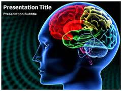 brain powerpoint templates free brain templates for powerpoint free http webdesign14
