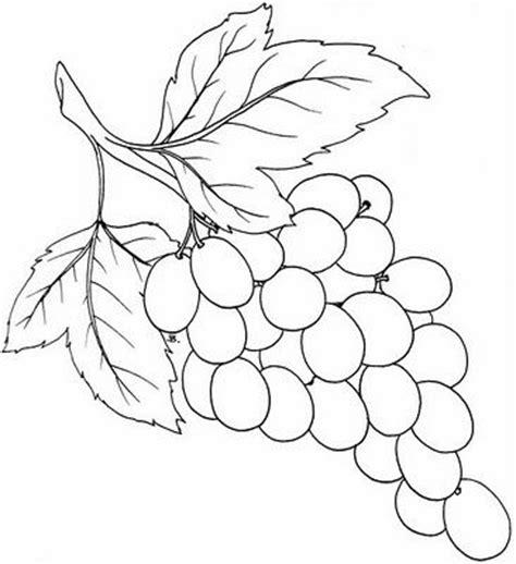 printable vine leaves pinterest the world s catalog of ideas