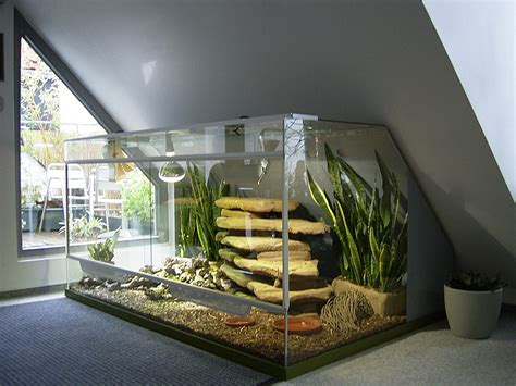 bettr ckwand kaufen bartagame terrarium einrichtung sel