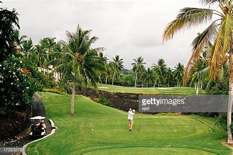 hing ka tree lahaina stock photos and pictures getty images