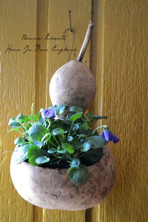 Gourd Planters by Pin By Deborah Nichols On Gourds Planters