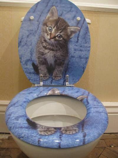 cat toilet seat    exist   cat loo