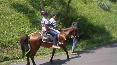 Sho Kuda naik kuda