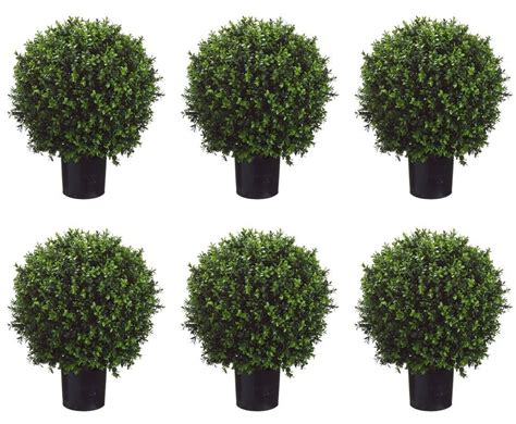 6 artificial 24 quot boxwood topiary ball in outdoor tree silk
