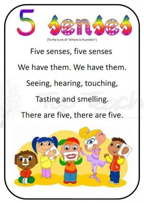 kindergarten activities senses 43 best images about five senses on pinterest poem