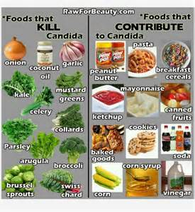 candida causing foods candida diet recipes