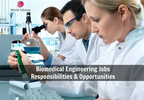 Biomedical Engineering Duties by Biomedical Engineering Responsibilities Opportunities World Informs