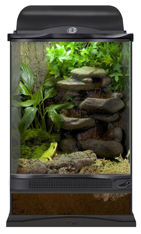xx zoo med terrarium setup   tree frog diy