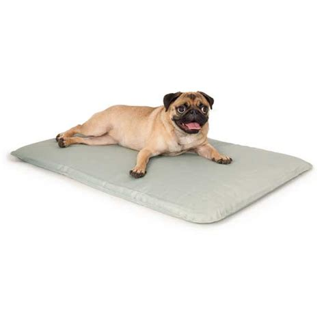 cool bed for dogs k h pet products cool bed iii thermoregulating pet bed gray