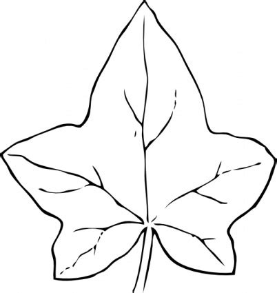Simple Leaf Outline by Simple Leaf Outline Clipart Best Cliparts Co