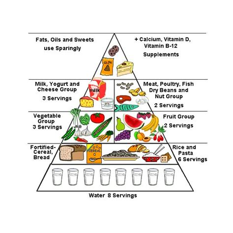diagram of the food pyramid image gallery new food pyramid diagram