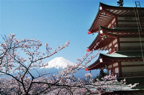 in japan there are 3 mount fuji named world heritage site the japan times