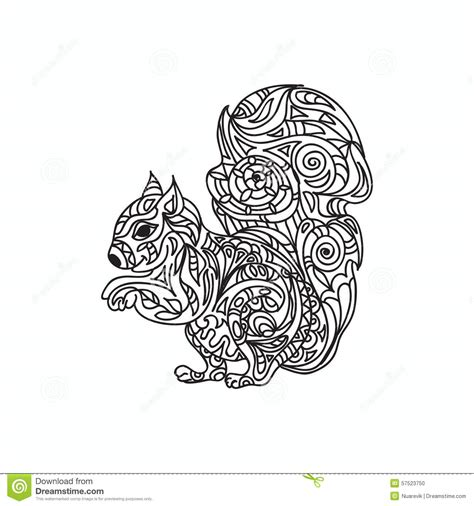Squirrel Coloring Page Stock Illustration   Image: 57523750