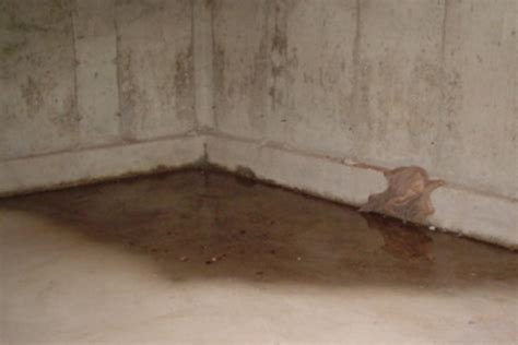standing water in basement basement waterproofing go pro waterproofing