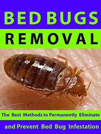 bed bug removal bed bugs removal the best methods to permanently