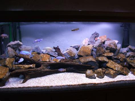 Decors Aquarium by D 233 Cor D Aquarium Pour Cichlides