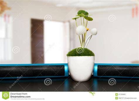 plant on desk plants on office desk stock photo image 21705830