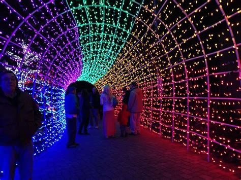 cambria festival of lights 17 best images about i love christmas on pinterest trees