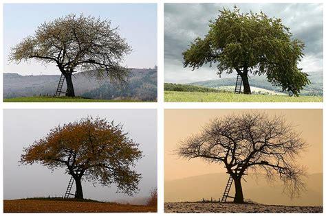 4 jahreszeiten bettdecke übergröße 4 jahreszeiten foto bild jahreszeiten ordner 1 natur