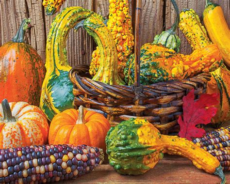 harvest colors harvest colors 1000 jigsaw puzzle