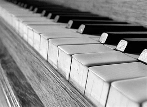 black and white piano keys labelle aurore flickr