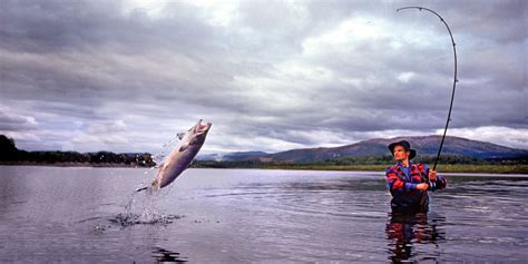 pictures of fishing fishing in tr 248 ndelag official travel guide to