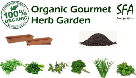 how to grow fresh herbs in your kitchen 100 organic gourmet herb garden grow your own fresh