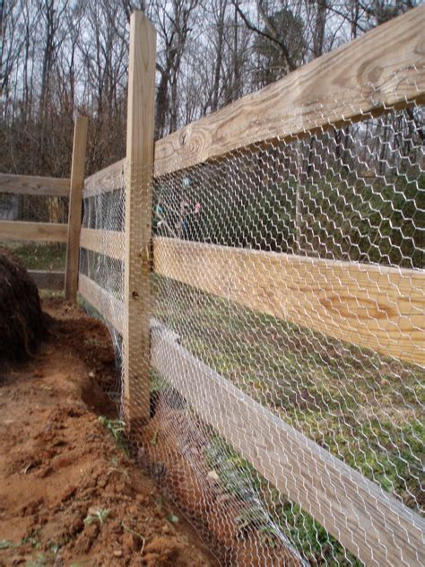 wire garden fence ideas  home rule