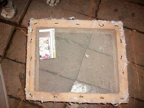 How To Make Photo Frames With Handmade Paper - green thinking for the average joe paper archives