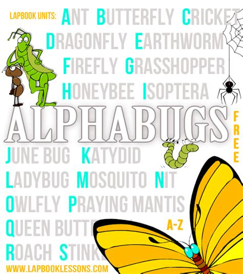 letters and lessons for the books free insect lapbooks