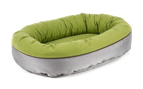 beds what is the best bed for your