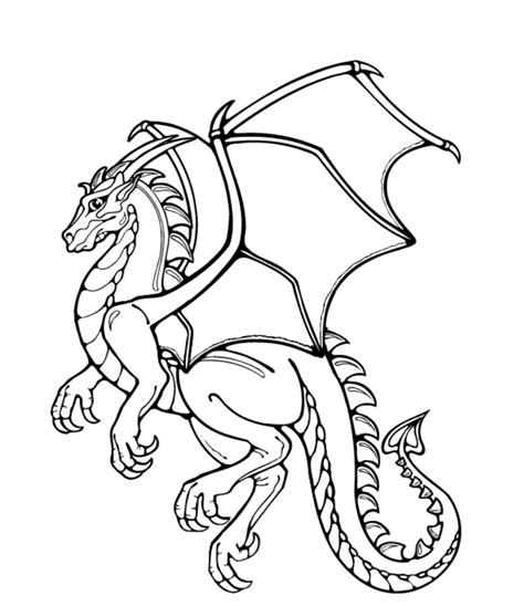dragon coloring pages realistic coloring home