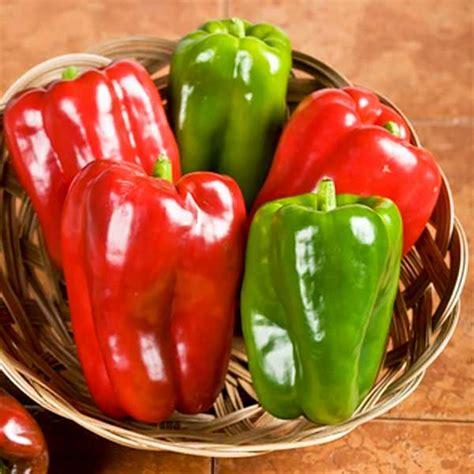 bell pepper seeds  bell peppers vegetable seeds