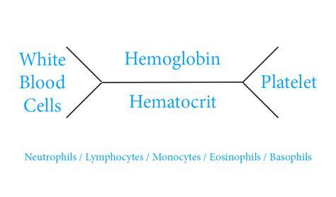 cbc fishbone diagram cbc diagram diarra