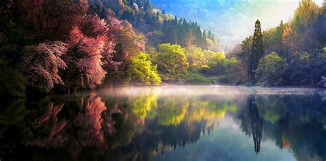 colorful hill wallpaper sunlight trees landscape colorful hill