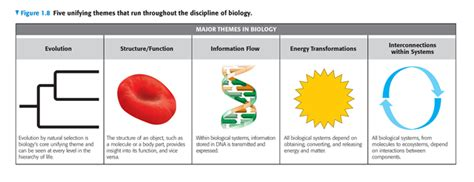 biological themes in film class simon et al the cbell essential biology series pearson