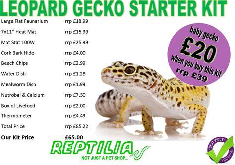 Bird Cage Home Decor reptilia leopard gecko starter kit