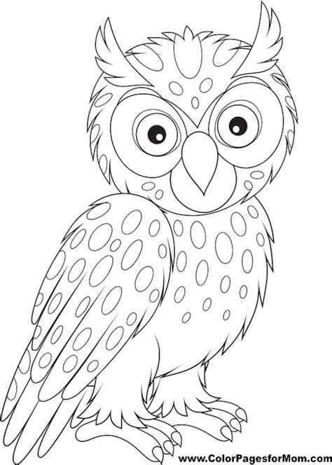 coloring page for adults owl free coloring pages of owls adults