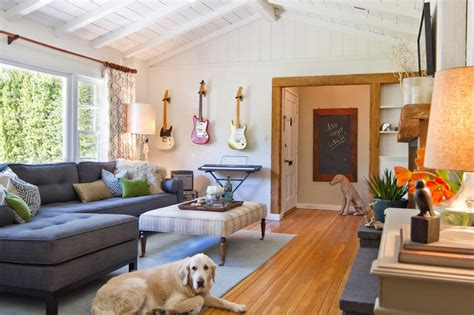 room pets tips for a pet friendly home hgtv