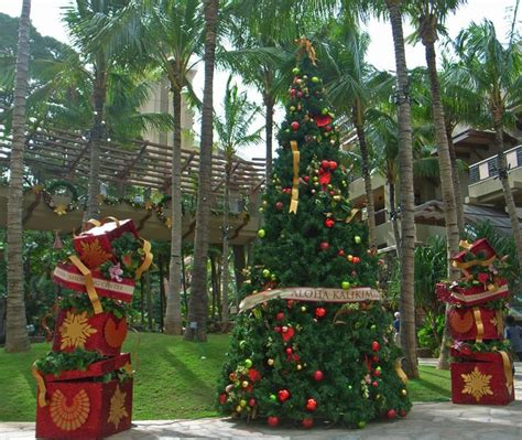 19 best images about christmas in hawaii on pinterest