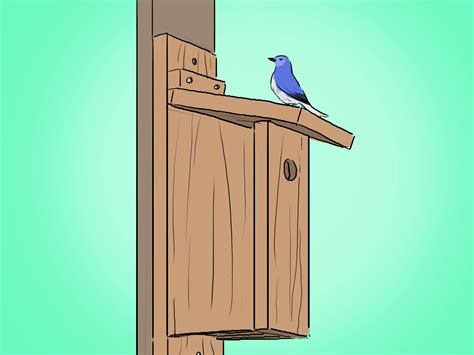 how to build a bluebird house plans how to build a bluebird house 12 easy steps wikihow