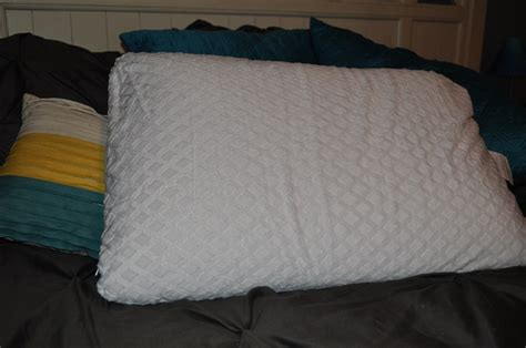Sleepys Pillows by Sleepy S Soiree Classic Plush Pillow Review And