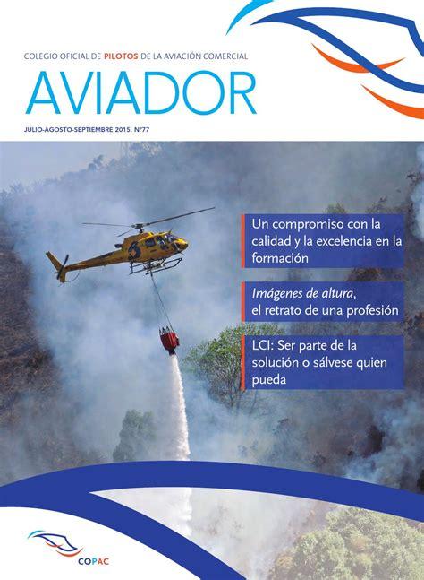 Modelo Curriculum Tesorero Aviador N 186 77 By Colegio Oficial De Pilotos De La Aviaci 243 N Comercial Copac Issuu