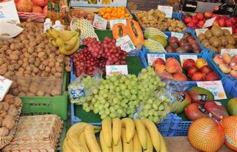 cassette di plastica per frutta luca c ambiente salute e natura in italia