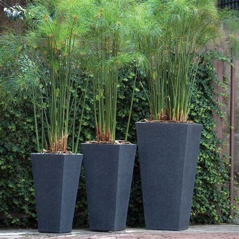 modern garden planters 1000 images about large pots on pinterest