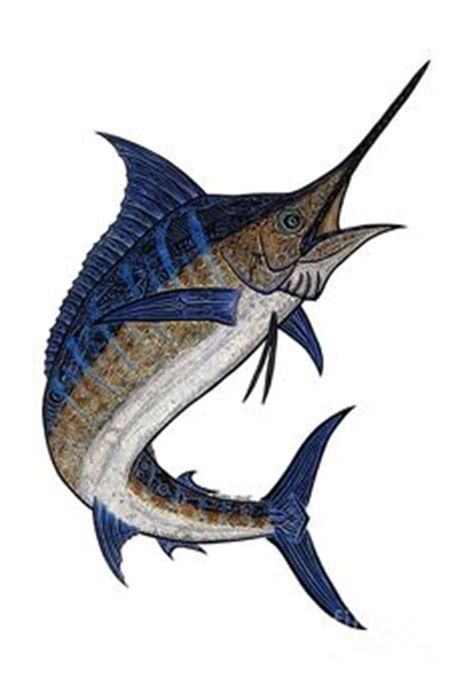 linedrawingswordfish coloring picture  spearfish