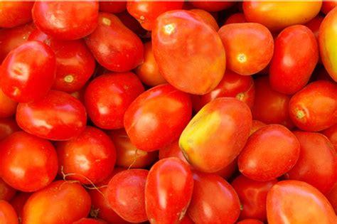 best tomato varieties to grow best tomato varieties to grow in your garden