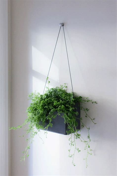 Planters On Wall by Opus Garten H 228 Ngen Self Irrigating Wall Planter